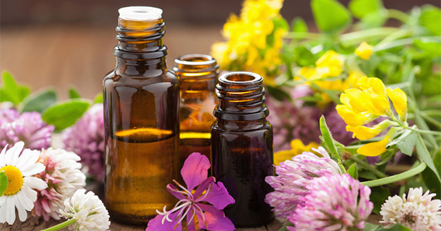 essential-oil-blending-guide